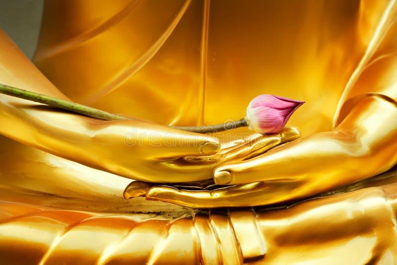 Lotos in der Hand von Buddha stockfotos