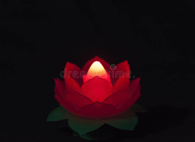 Lotos-Lampe stockfotografie