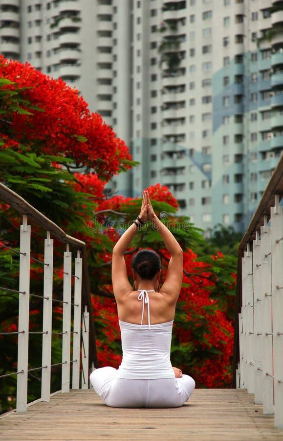 lotosowej pozyci joga zdjęcie royalty free