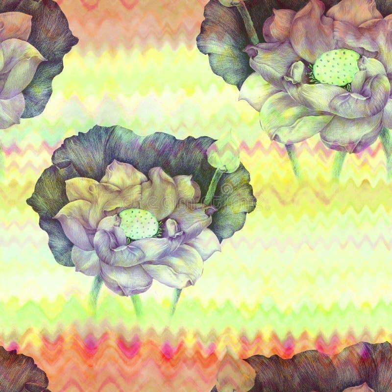 Lotosowi kwiaty i pączki na akwareli tle bezszwowy wzoru Używa drukowanych materiały, znaki, plakaty, pocztówki, pakuje ilustracja wektor