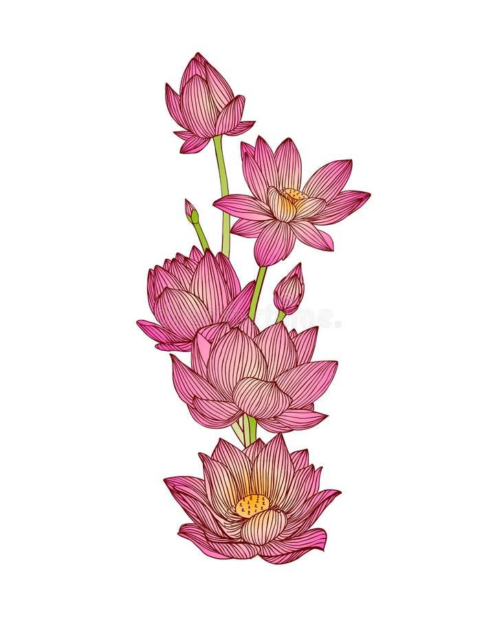 Download Lotosowych kwiatów bukiet ilustracja wektor. Ilustracja złożonej z wally - 57651033