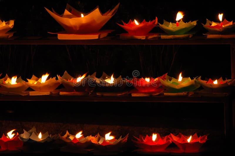 Lotosu Kształtującego świece. Fotografia Royalty Free