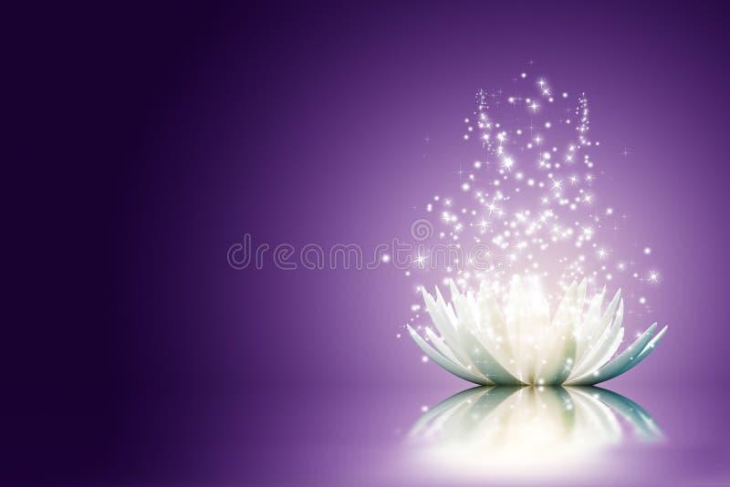 Lotosu kwiat ilustracja wektor