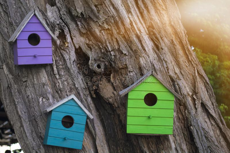 Colorful wooden birdhouse mounted on tree. Lots of colorful wooden birdhouses on a tree against summer flare. Colorful wooden birdhouse mounted on tree royalty free stock image