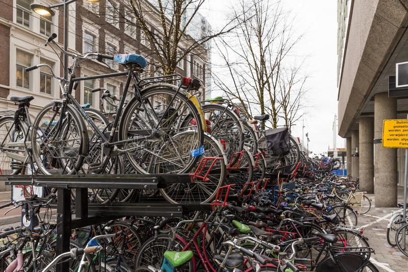 Lots of Dutch bicycles at a parking lot royalty free stock image