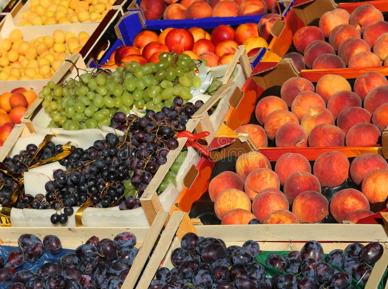 Lots of fruit boxes for sale at market. Many fruit boxes for sale in the fruit and vegetable market stock photo