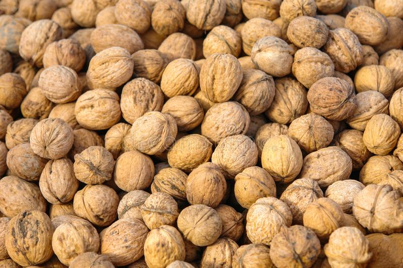 Lots of inshell walnuts on the market counter stock photo