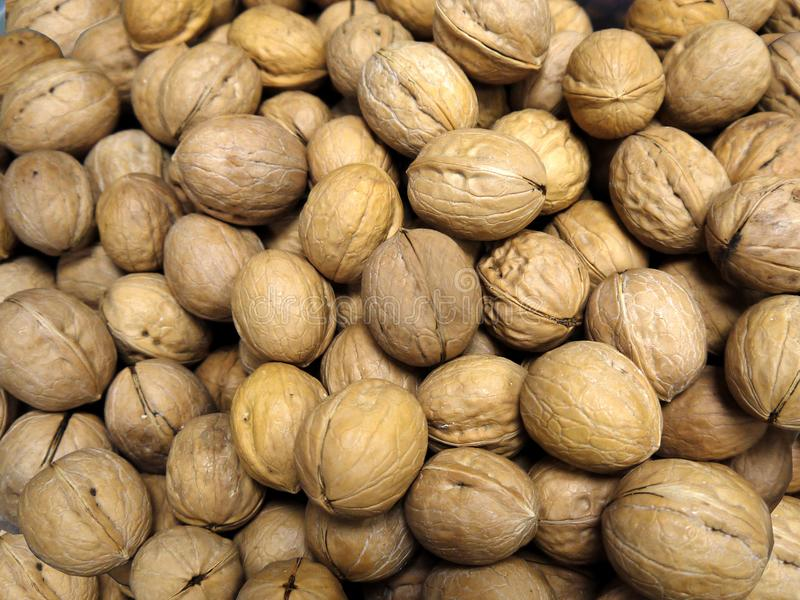 The lots of inshell walnuts. Photographed from close range royalty free stock photos