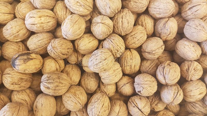 Lots of inshell walnuts texture. Photo about lots of brown inshell walnuts texture background in a market royalty free stock image