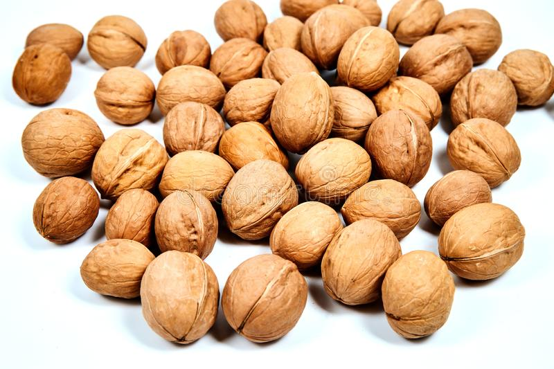 Lots of inshell Walnuts on white background. Lots of inshell Walnuts on isolated white background stock photography