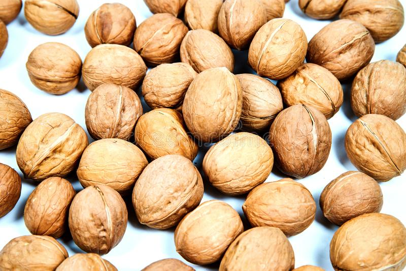 Lots of inshell Walnuts on white background. Lots of inshell Walnuts on isolated white background stock images