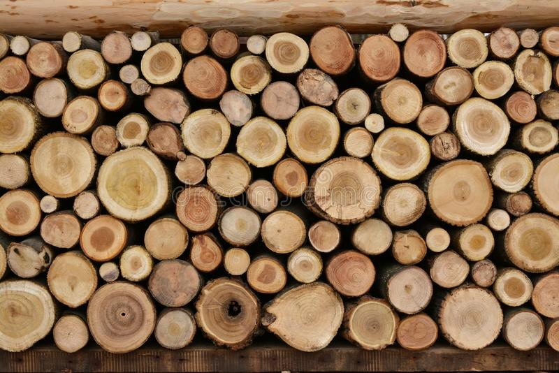Lots of Logs royalty free stock photos