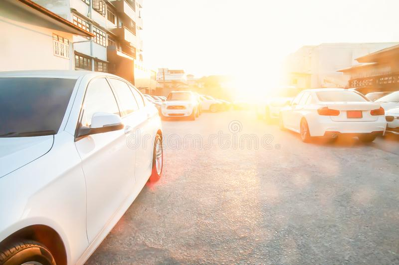 Lots of modern clean shine white cars in parking area royalty free stock photography