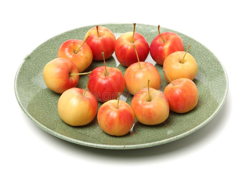 Lots of small paradise apple royalty free stock image