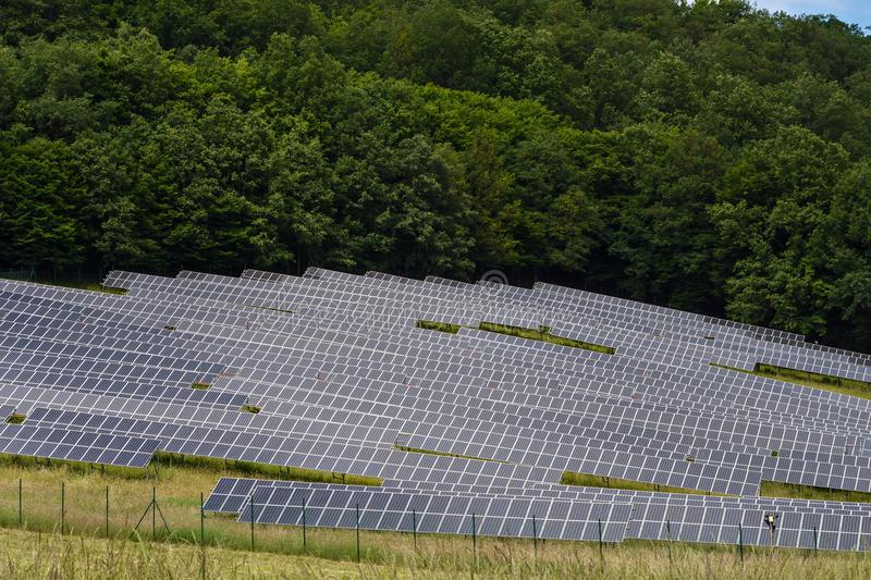 Lots of solar collectors and green trees. In the background royalty free stock images