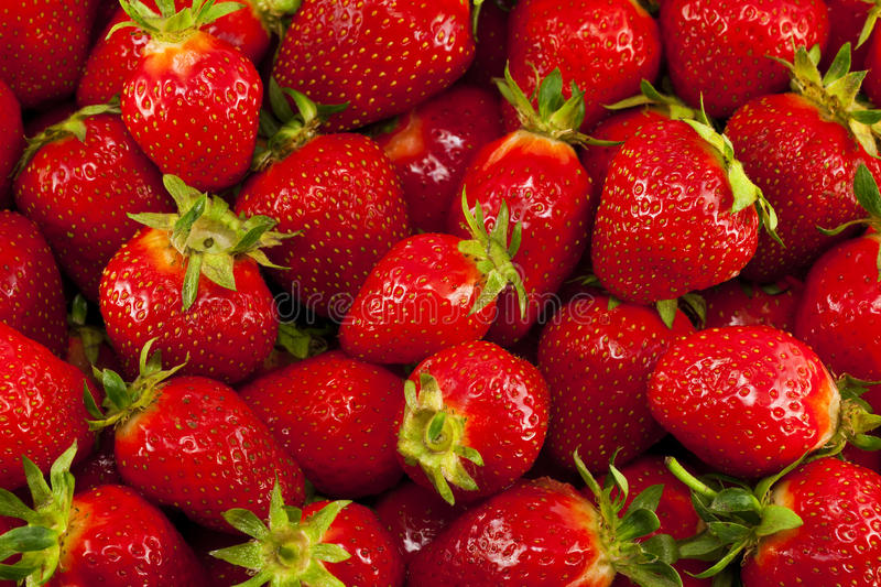 Download Lots of strawberries stock photo. Image of image, full - 25438904
