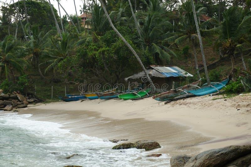 Lott av fartyg i stranden, Sri Lanka, Asien royaltyfria bilder