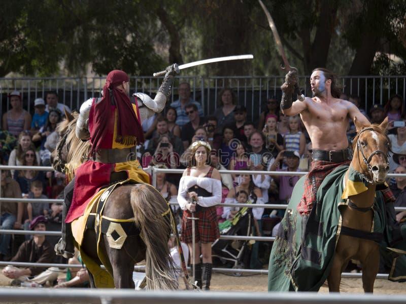 Lotta fra due cavalieri posteriori del cavallo fotografia stock