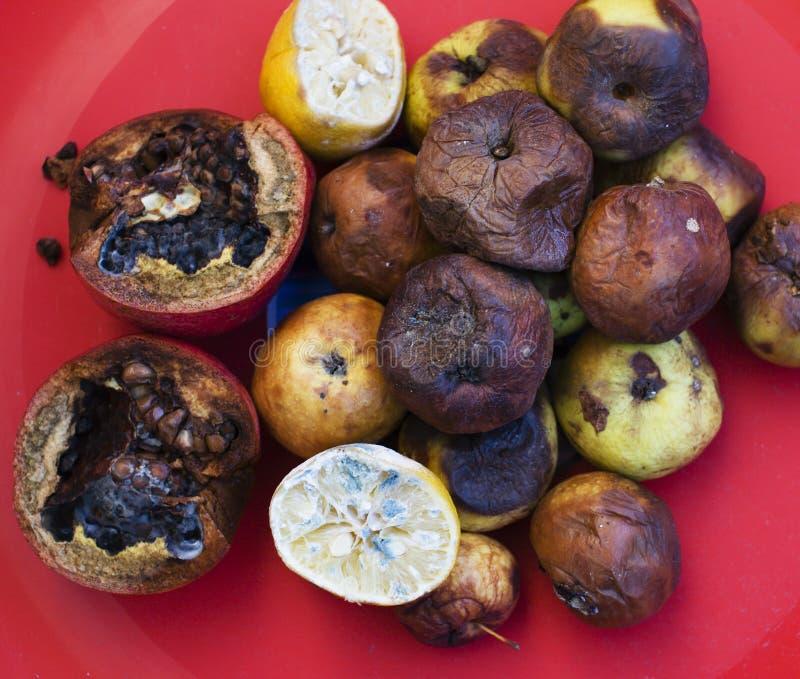 Lotter av roten frukter Äpplen citronen, granatrött molden mörkt och som torkar upp Miljöomvandlingsbegrepp arkivbild
