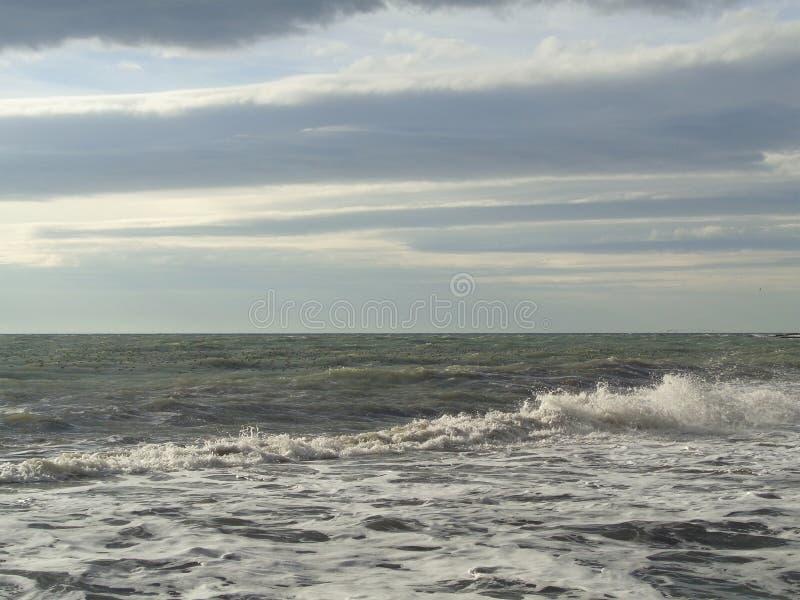 Lotti dei gabbiani sull'acqua, mare tempestoso fotografia stock libera da diritti