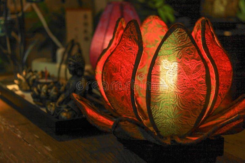 Lotus światło obrazy stock