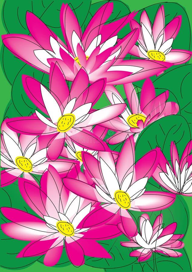 Lotus illustration stock