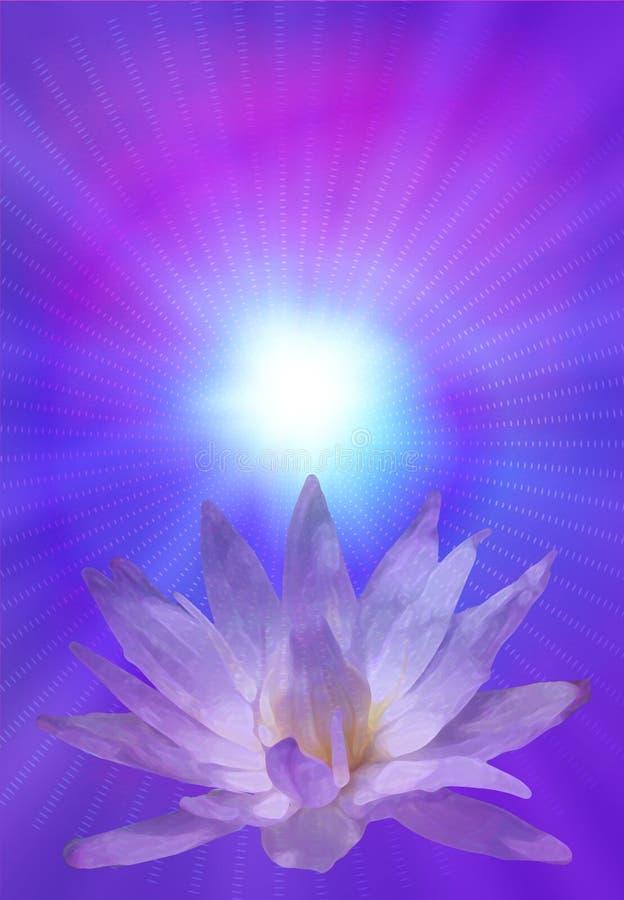 Lotus illustration libre de droits
