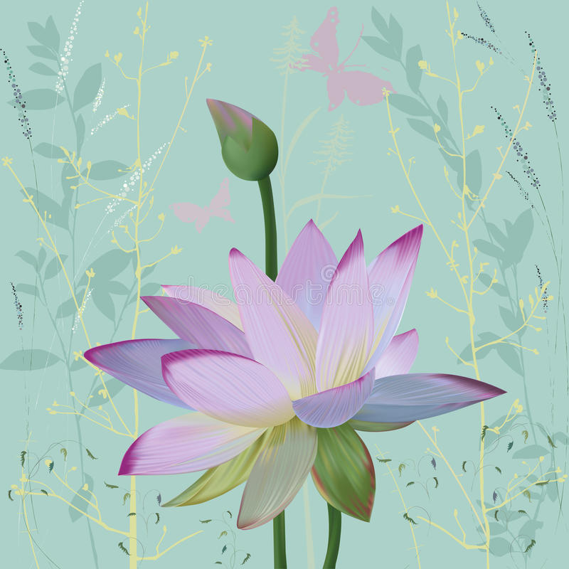 Lotus stock illustration