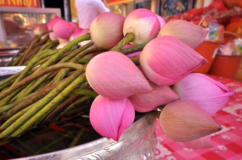 Download Lotus stock foto. Afbeelding bestaande uit bloemen, up - 39107072