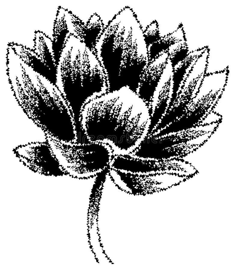 Lotus иллюстрация вектора