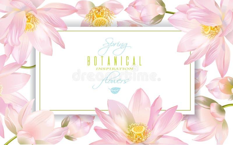 Lotus-bloembanner royalty-vrije illustratie