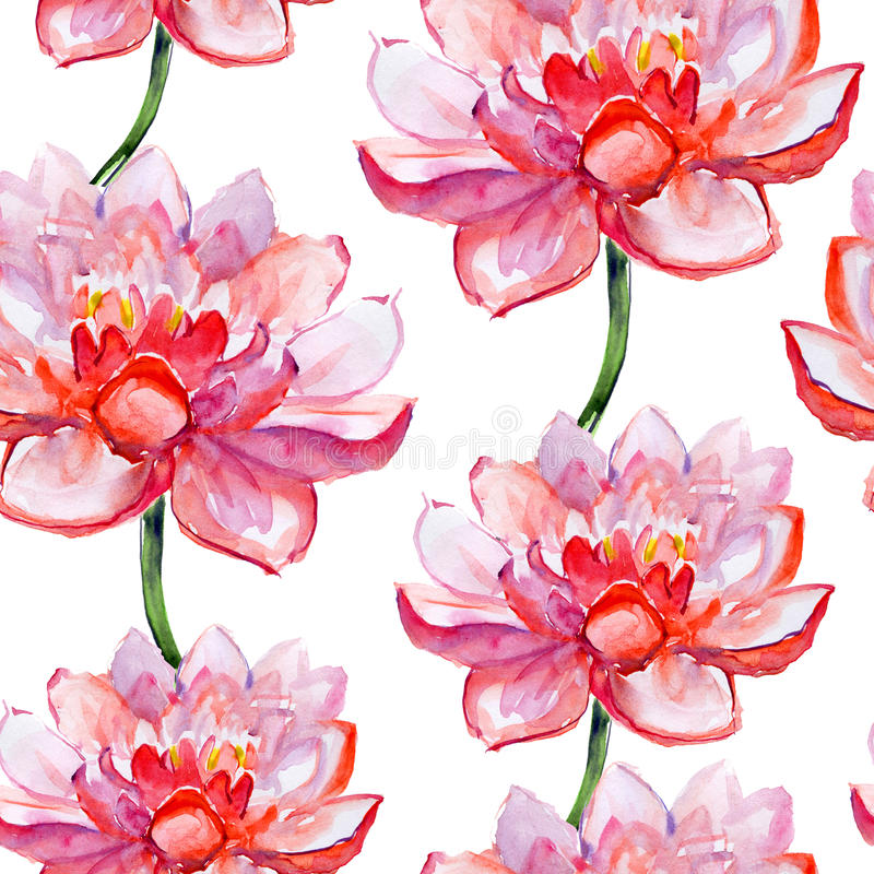 Lotus-bloempatroon. waterverf. stock illustratie