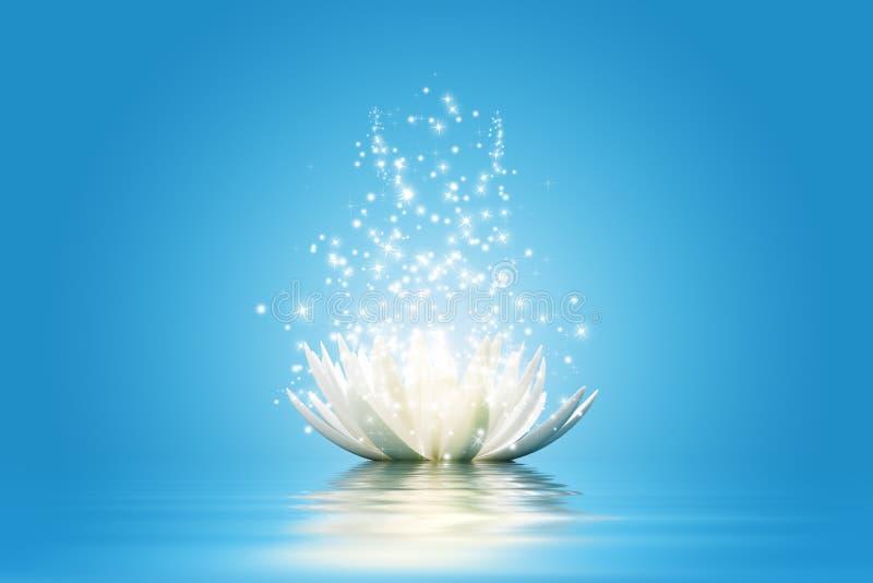 Lotus blomma vektor illustrationer