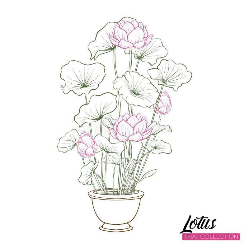 Lotus blomma i kruka Botanisk illustrationstil materielillustr stock illustrationer