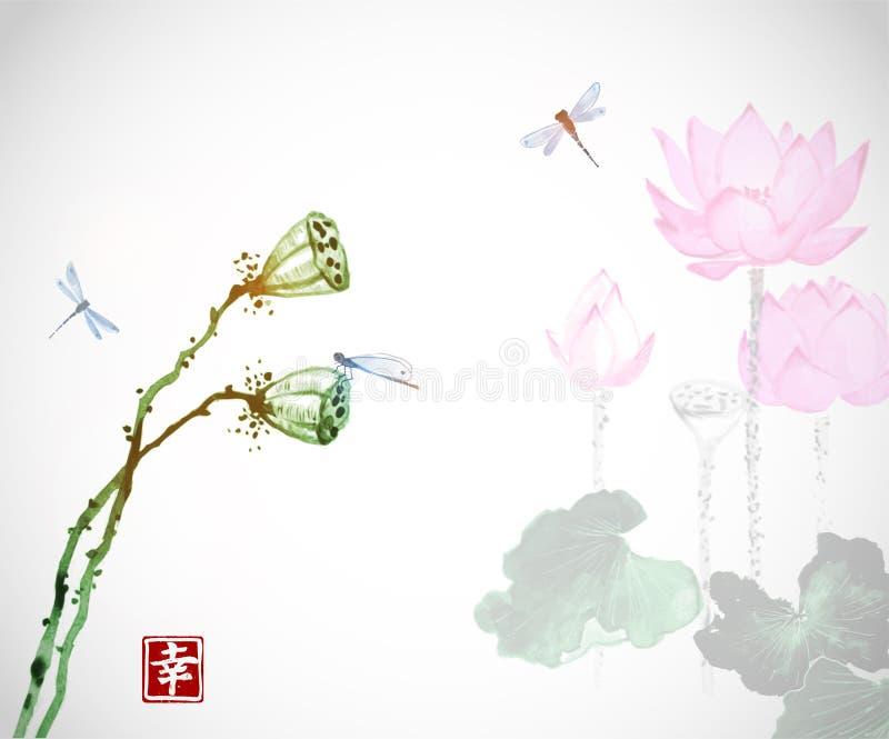 Lotus-Blumen Und Libellen Auf Weißem Hintergrund Traditionelles ...