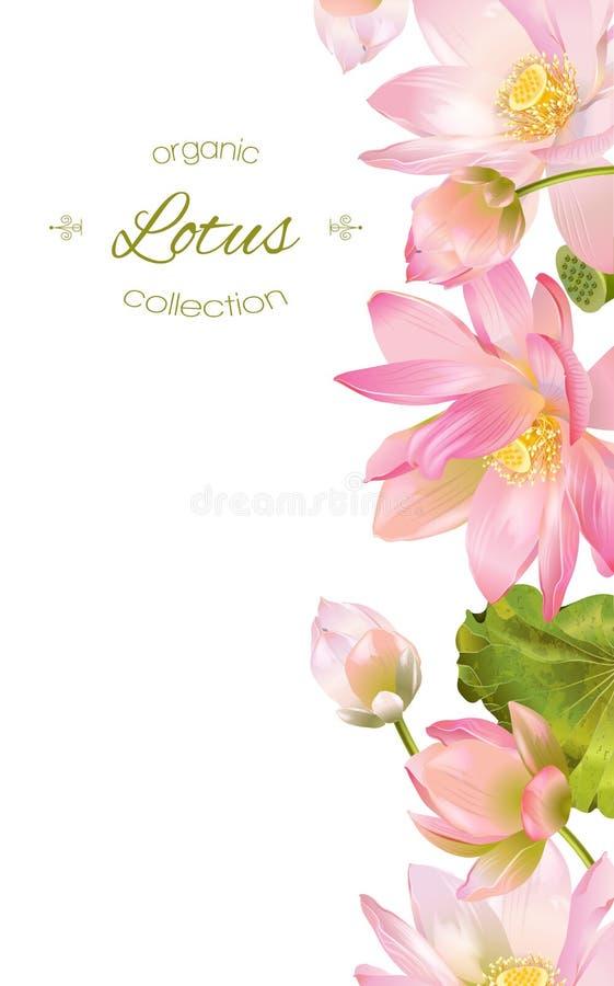 Lotus-Blumenfahne stock abbildung