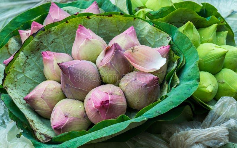 Lotus Bouquets no mercado da flor de Banguecoque imagens de stock royalty free