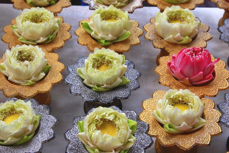 Download Lotus for Buddha stock photo. Image of lotus, calm, serenity - 15000722