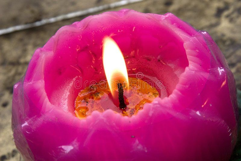 Lotus Candle royalty free stock photo