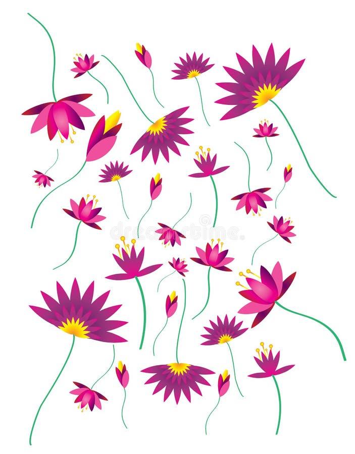 Lotus. Colourful lotus pattern illustration graphic design royalty free illustration