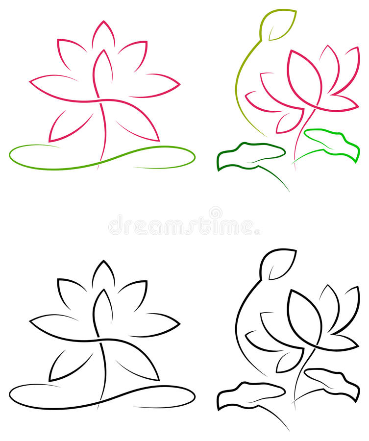 Lotus com folhas ilustração royalty free