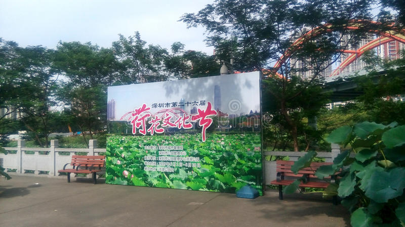 Lotus culture festival in SHENZHEN. Lotus culture festival held in Honghu park, Luohu, Shenzhen,China,Asia stock photos