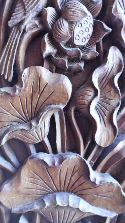 Lotus Drewniany fotografia stock