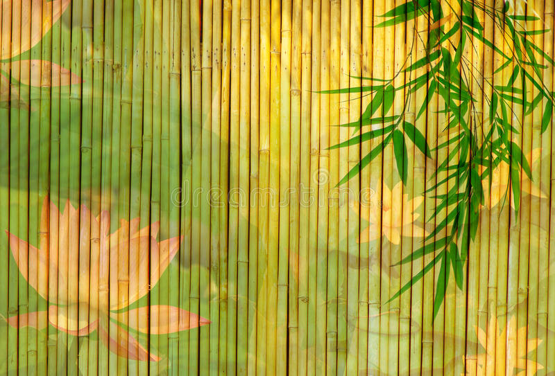 Lotus en bamboe stock afbeelding