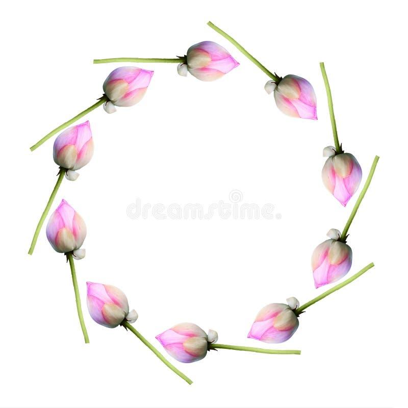 Lotus en modelo del círculo fotos de archivo