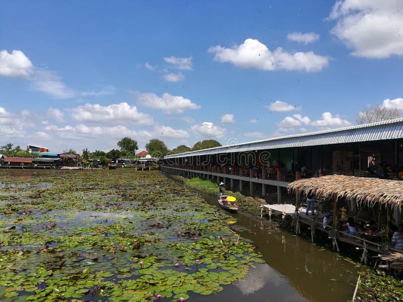 Lotus Floating Market roja fotos de archivo