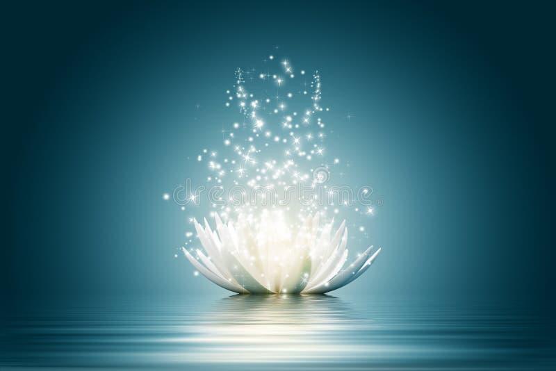 Lotus flower stock illustration