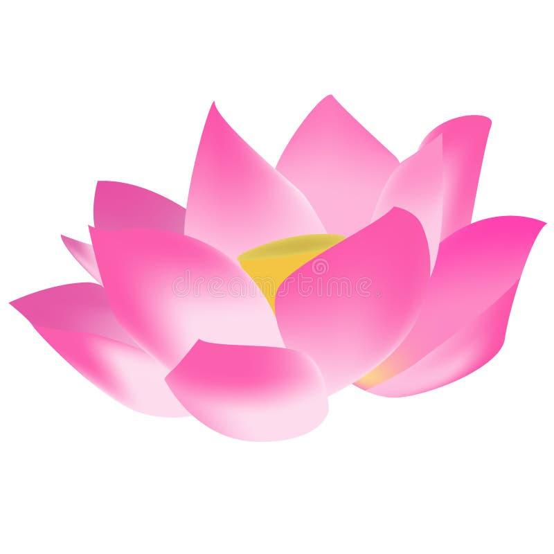 lotus flower stock vector illustration of festival graphic 6193412 rh dreamstime com red lotus flower graphic red lotus flower graphic