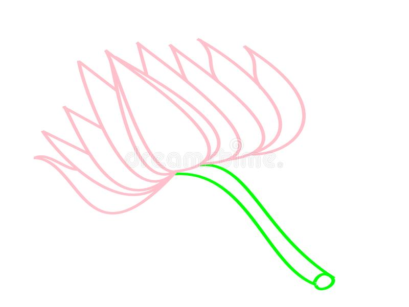 Lotus flower for art book stock images