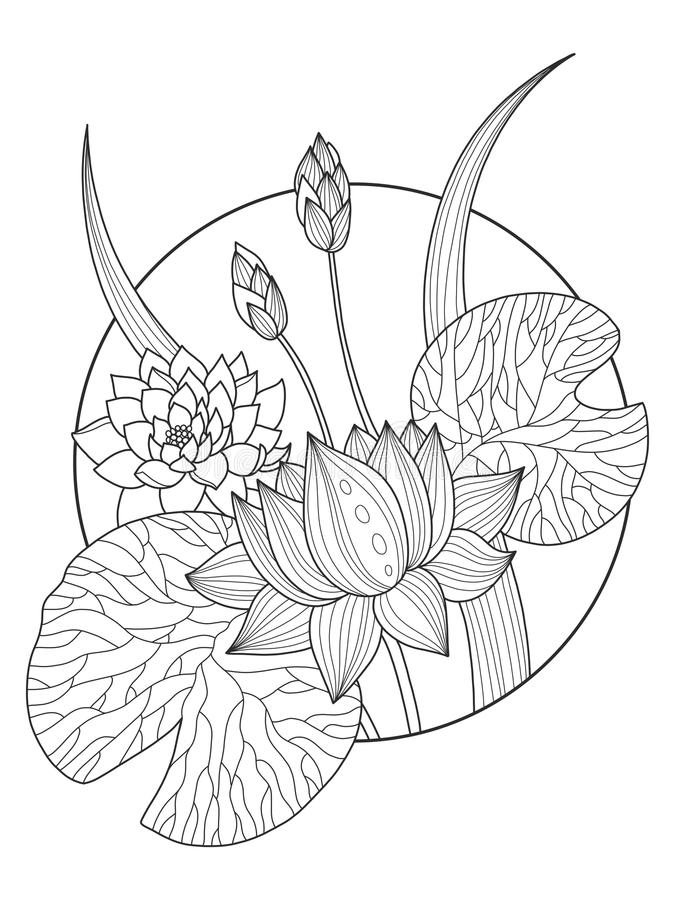 Lotus flower coloring book vector illustration. Tattoo stencil. Black and white lines. Lace pattern stock illustration